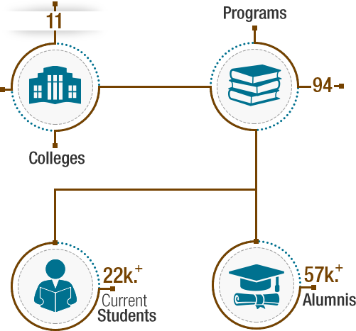 Infographic Content about Qatar University